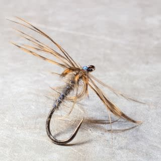 """The Sand Gnat Hook: Size 0 (Partridge SUD2 size 14) Body: Slaty-coloured blue silk, dubbed sparingly with Water-rat's down. Wings: Wings and Legs dressed hacklewise, with a feather from the outside of a Woodcock's wing, near the butt -not too dark. This fly is mentioned in a fishing article by Max Walbran in the Fishing Gazette of April 1885. """"This fly is only met with on certain rivers, where long beds of sand and gravel run down to the water's edge. On Warm, sunny days such places may often be seen covered with this fly."""" Max Walbran #northcountryspiders  #wetflytying  #wetfly  #softhackle #softhackles #theslidingstream #traditionalflytying #classicflytying #flytying  #flytyingjunkie  #flytyingaddict #flugbindning #fluefiske #flyfishing #fliegenfischen  #fliegenbinden  #flugfiske #troutfishing #vintageflyfishing  #classicflyangler  #classicflies  #vintageflies"""