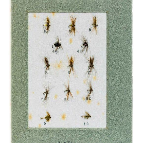 william-baigent-trout-flies