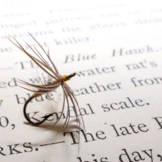 A couple of fly patterns taken from Walbran's Grayling And How To Catch Them. Both patterns dressed in original Walbran hooks using authentic vintage materials. #Northcountryspiders #wetflies #theslidingstream #softhackles #softhackle #traditionalflytying #classicflytying #flytying #flytyingjunkie #flugbinding #fluefiske #troutflies #flyfishing #flyfishinglife #browntroutfishing #troutfishing #catchandrelease #wildbrowntrout #flyfishinglife #flyfishinglifestyle #keepemwet