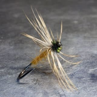 With small flurries of needle flies enticing Wharfedale trout and grayling to the surface. Here is  James Whitaker's Little Winter Brown pattern from 1849. A perfect match for late season stone and  needle flies trapped in the surface. Hook: #16 Partridge SUD2 Silk: Orange Body: Orange silk lightly dubbed with hare's ear Hackle: Woodcock Undercovert tied with the inside of the feather facing forward Head: Peacock Herl  @partridge_hooks #northcountryspiders #wetflytying #wetfly #softhackle #softhackles #theslidingstream  #traditionalflytying #classicflytying #flytying #flytyingjunkie #flytyingaddict #flugbindning #fluefiske  #flyfishing #fliegenfischen #fliegenbinden #flugfiske #